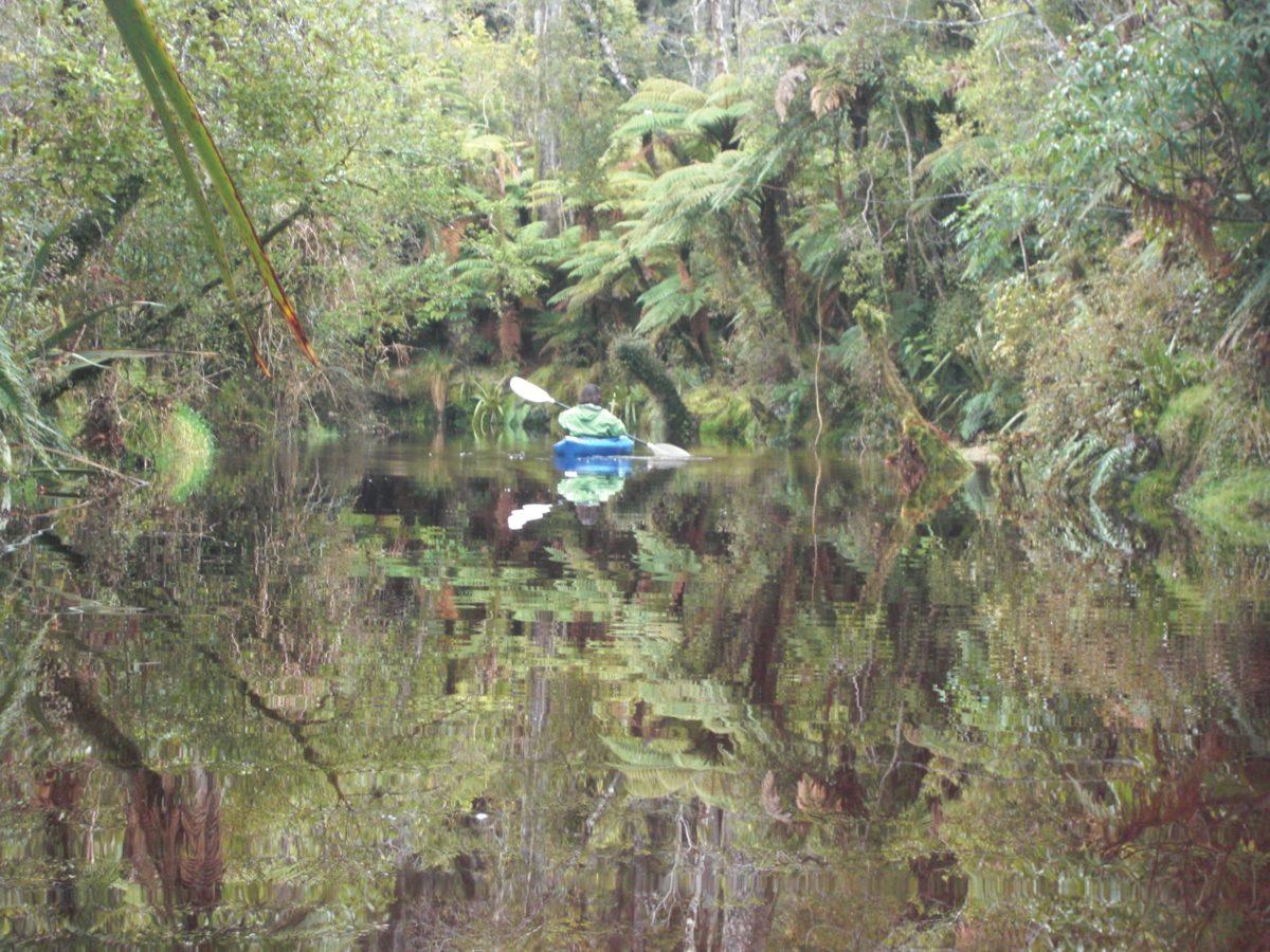 Paramata Lodge Luxury West Coast Accommodation - Canoeing the creek